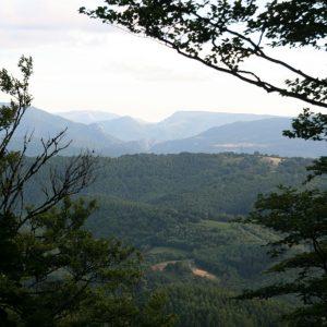 Vista Sayoa, Basaburua y Ultzama desde cumbre del Seambe.