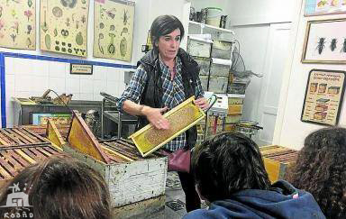 casa rural ecológica Kaaño etxea - Valle Ultzama - museo miel - ISABEL