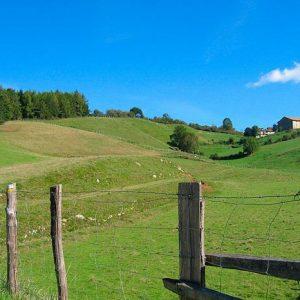casa rural ecológica Kaaño etxea-Valle Larraun-prados
